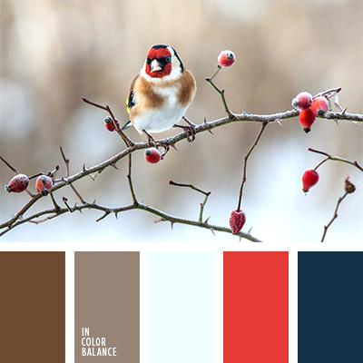 paleta-de-colores-1110