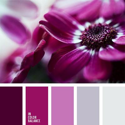 paleta-de-colores-1116
