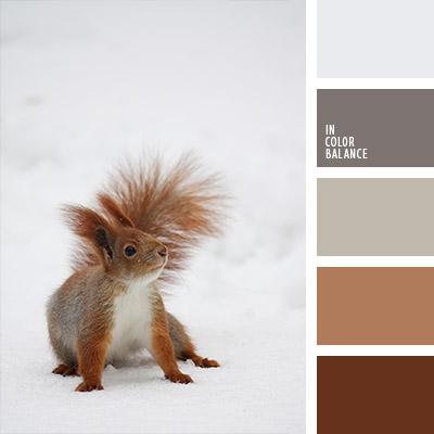 paleta-de-colores-1128