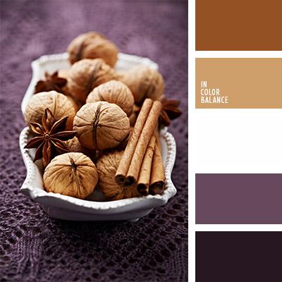 paleta-de-colores-1131