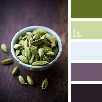 paleta-de-colores-1133