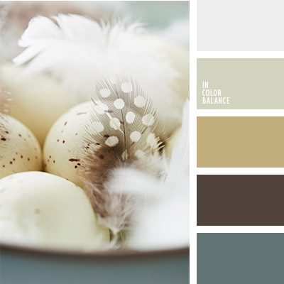 paleta-de-colores-1134