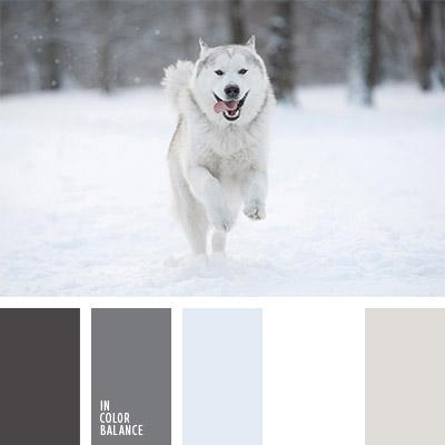 paleta-de-colores-1143