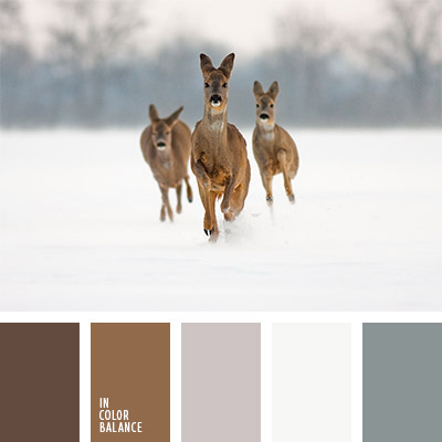 paleta-de-colores-1145