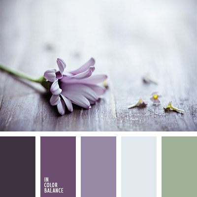 paleta-de-colores-1146