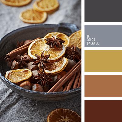 paleta-de-colores-1149