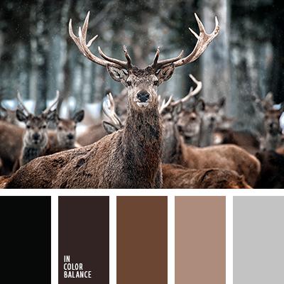paleta-de-colores-1159