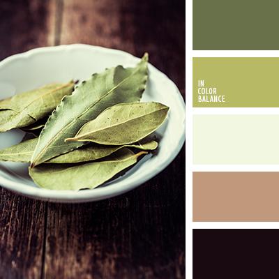 paleta-de-colores-1177