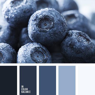 paleta-de-colores-1193