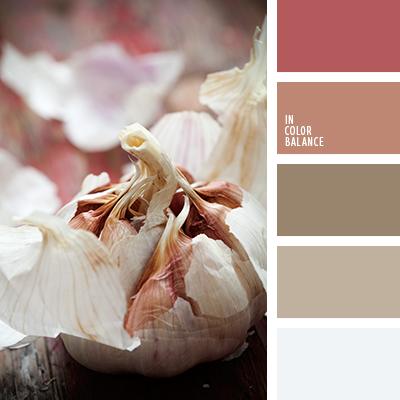 paleta-de-colores-1202