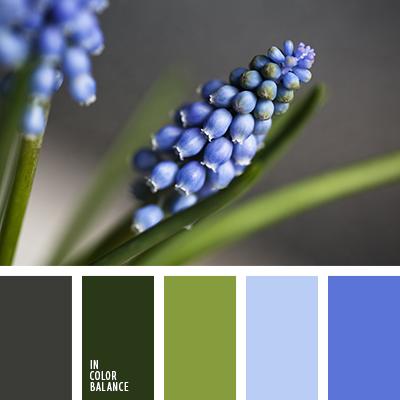 paleta-de-colores-1205
