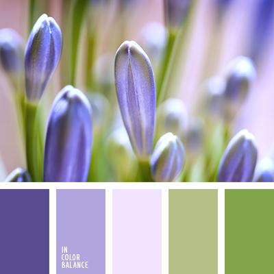 paleta-de-colores-1206