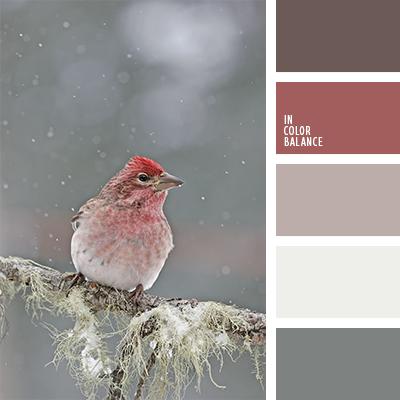 paleta-de-colores-1207