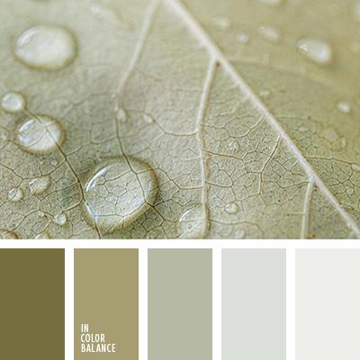 paleta-de-colores-1213