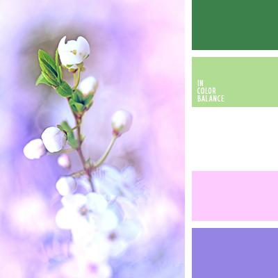 Весенние буйство цветов