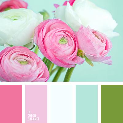 paleta-de-colores-1234