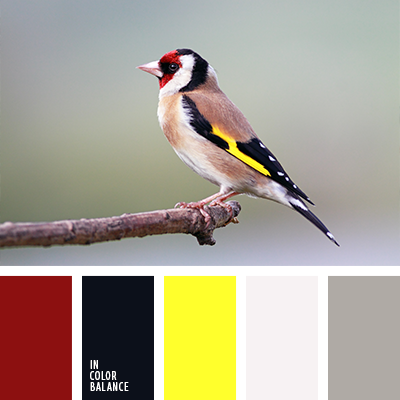 paleta-de-colores-1239
