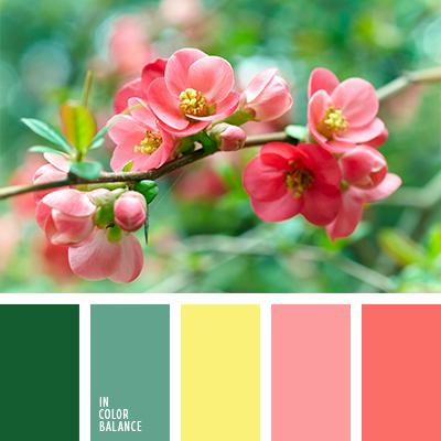 paleta-de-colores-1245