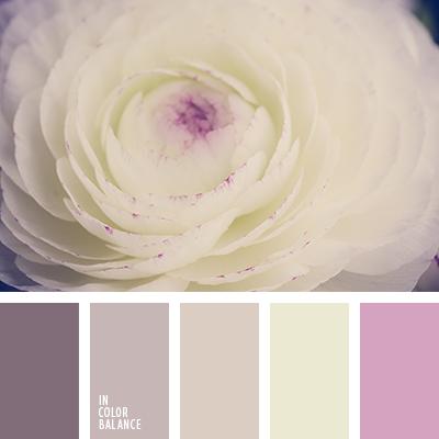 paleta-de-colores-1251