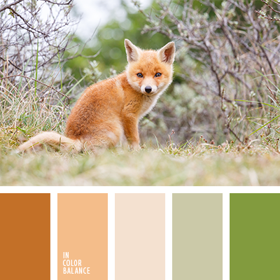 paleta-de-colores-1254