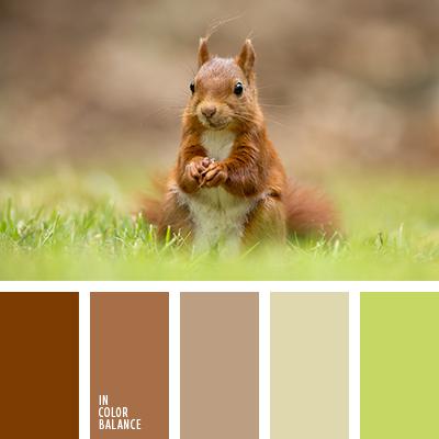 paleta-de-colores-1258