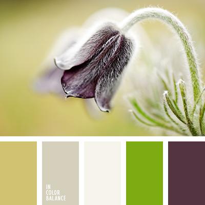 paleta-de-colores-1262
