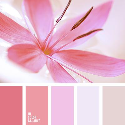 paleta-de-colores-1266