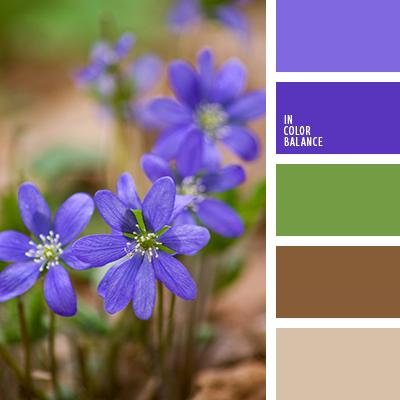 paleta-de-colores-1269