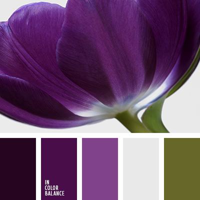 paleta-de-colores-1276
