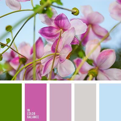paleta-de-colores-1289