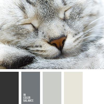 paleta-de-colores-1291