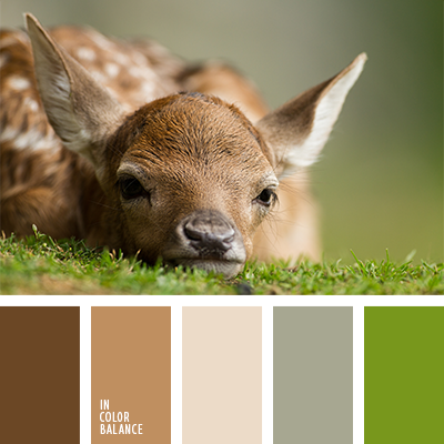 paleta-de-colores-1292