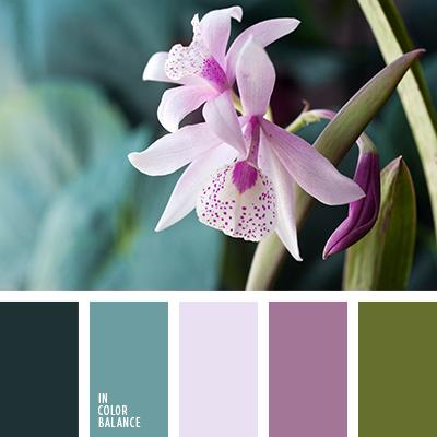 paleta-de-colores-1312
