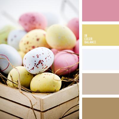 paleta-de-colores-1319