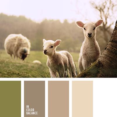 paleta-de-colores-1339