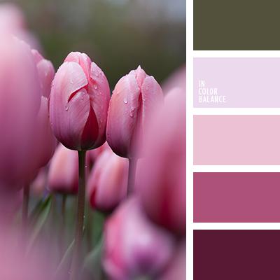 paleta-de-colores-1341