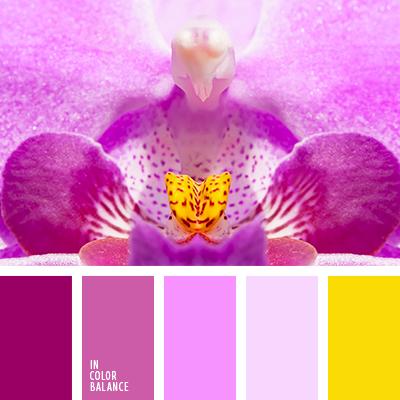 paleta-de-colores-1347