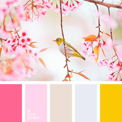 paleta-de-colores-1355