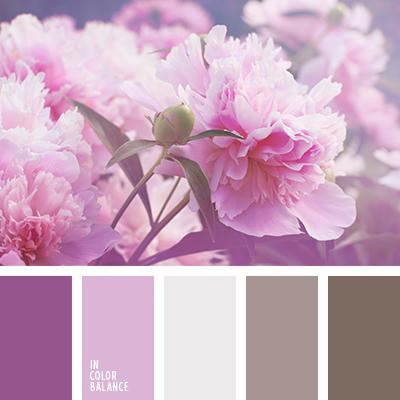 paleta-de-colores-1362