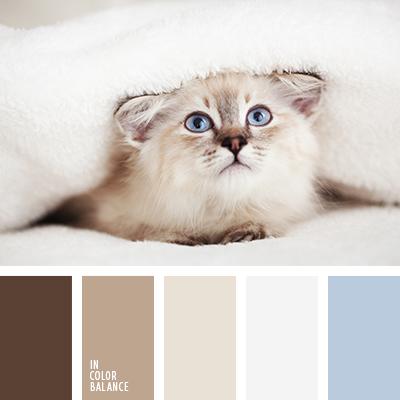 paleta-de-colores-1363