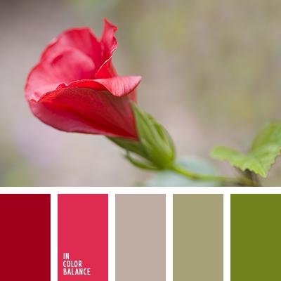 paleta-de-colores-1365