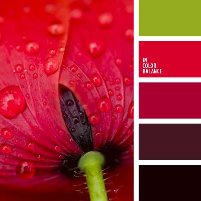 paleta-de-colores-1372