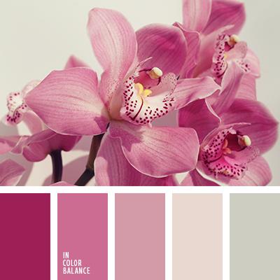paleta-de-colores-1374