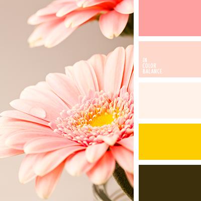 paleta-de-colores-1378