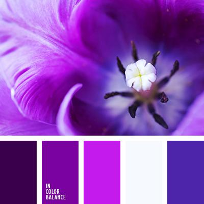 paleta-de-colores-1390