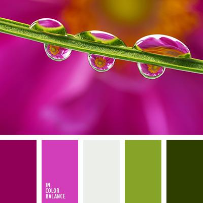 paleta-de-colores-1411