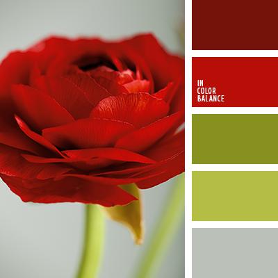paleta-de-colores-1413
