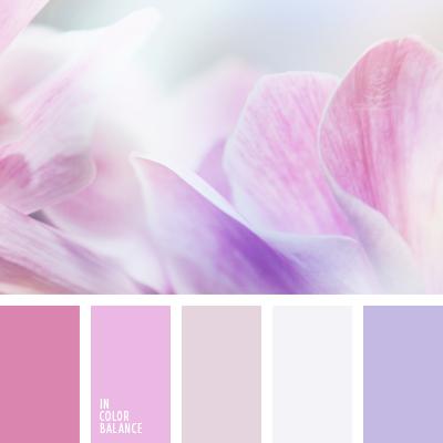 paleta-de-colores-1416