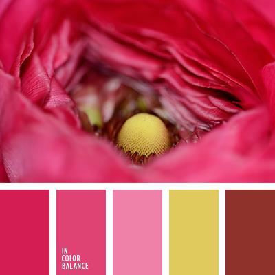 paleta-de-colores-1422