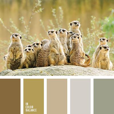 paleta-de-colores-1423